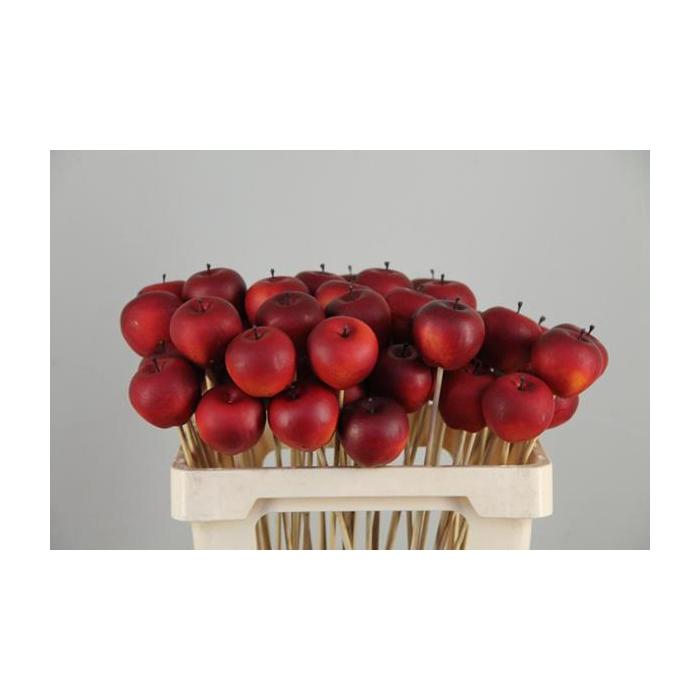 <h4>Stick Apple 4cm/medium Red</h4>