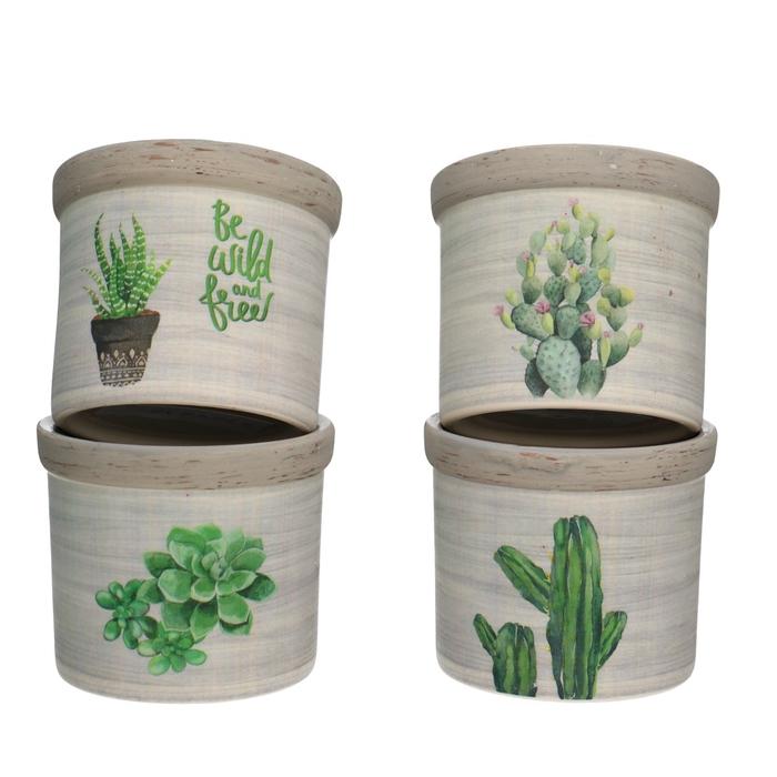 <h4>Ceramics Cactus pot d08*7.5cm ass.</h4>