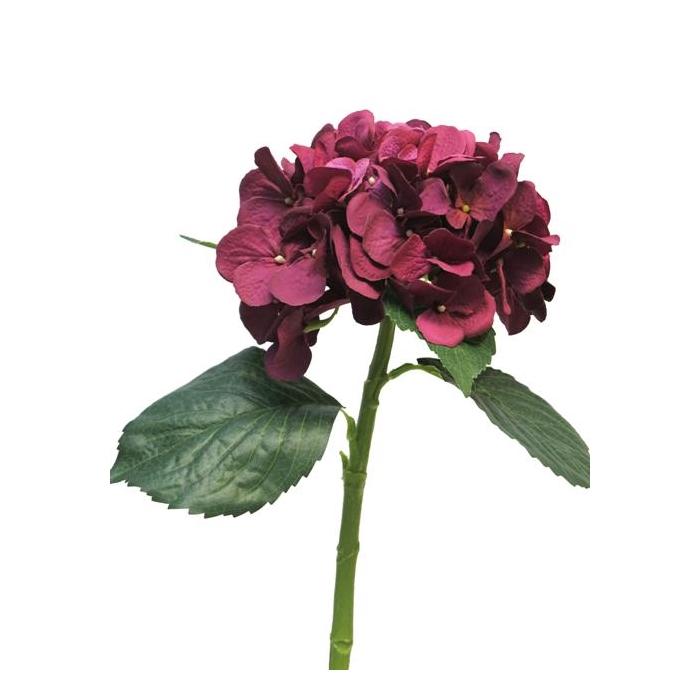 <h4>SILK FLOWERS - HYDRANGEA ARTIST BEAUTY 48CM</h4>