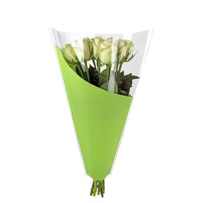 <h4>Housses 40x30x12cm OPP40 Angle vert</h4>