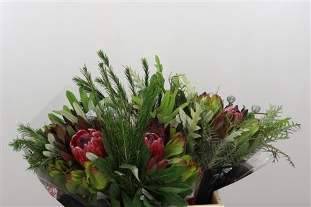 <h4>Protea Bqt Round Special</h4>
