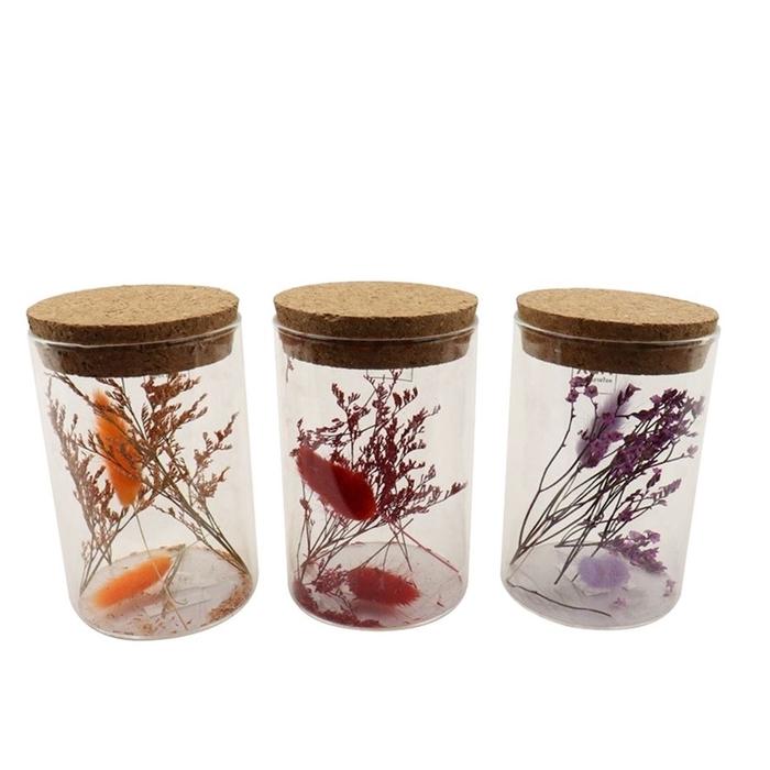 <h4>Dried flowers Glass+dried flower d8*12cm ass.</h4>