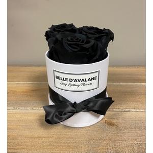 Box rd 10cm wit-zwart