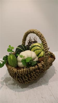 <h4>4084 Tasmand Grof Fruit</h4>