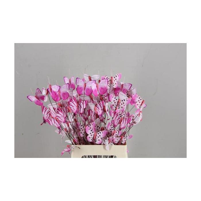 <h4>Stick Butterfly Bouquet Pink</h4>