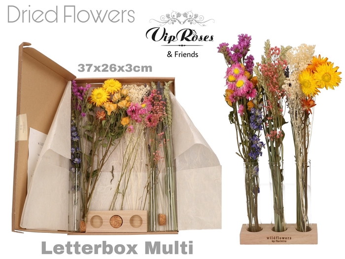DRIED LETTERBOX MULTI TUBES