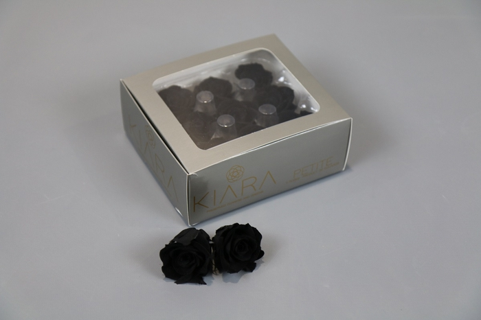 <h4>Rosa Preserved Black Beauty Petite</h4>