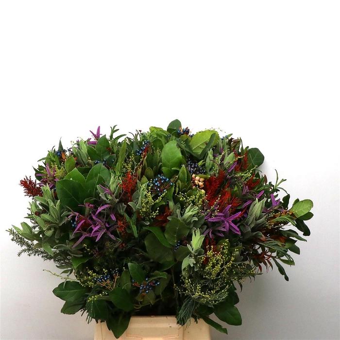 <h4>Bouquet De Provence Extra</h4>