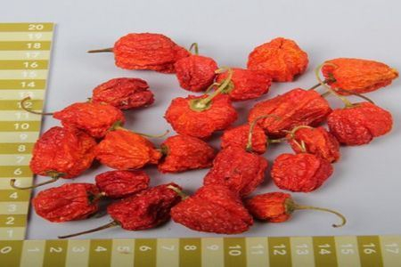 <h4>Basic Chilli Round Small Orange 200g</h4>