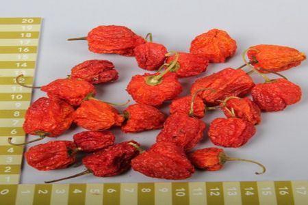 <h4>Basic Chilli Round Small Orange 200g</h4>