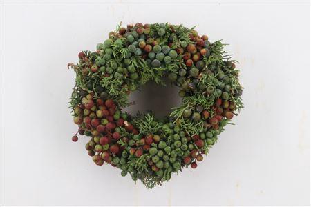 <h4>Wr Juniperus Naturel/red 20cm</h4>