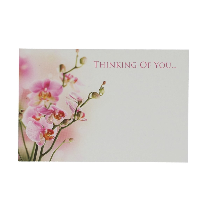 <h4>Labels Kaart 9*6cm x50 Thin.of You</h4>