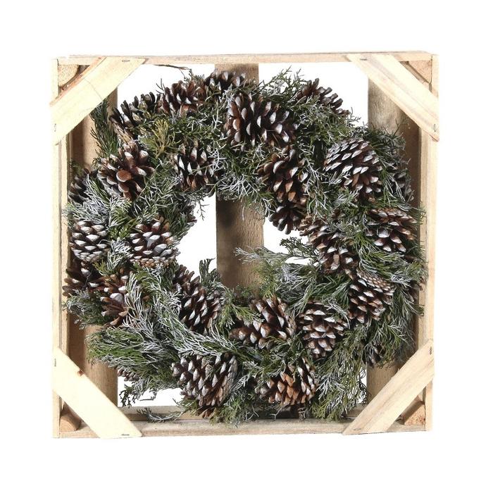 <h4>Wreath d38cm Pinus nigra</h4>