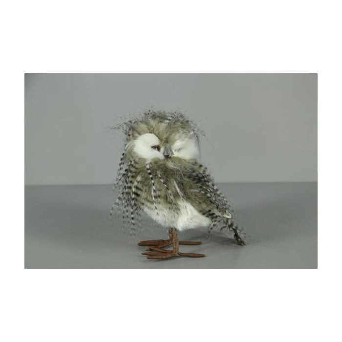 <h4>Fig. Feather Owl 20x14</h4>