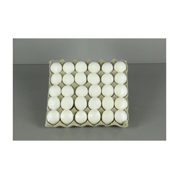 <h4>Egg Chicken White (30pcs/tray)</h4>