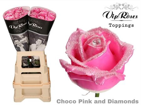 <h4>Ro Choco Pink & Diamonds ( R 402 )</h4>