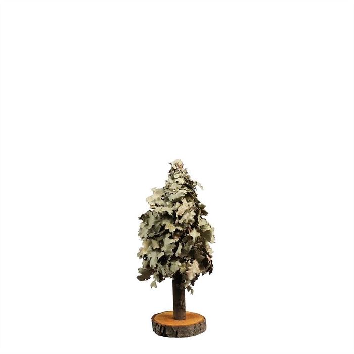 <h4>TREE MINI OAK 40CM NAT. GREEN</h4>