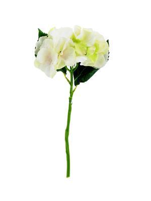 <h4>Af Hydrangea 35cm Cream</h4>