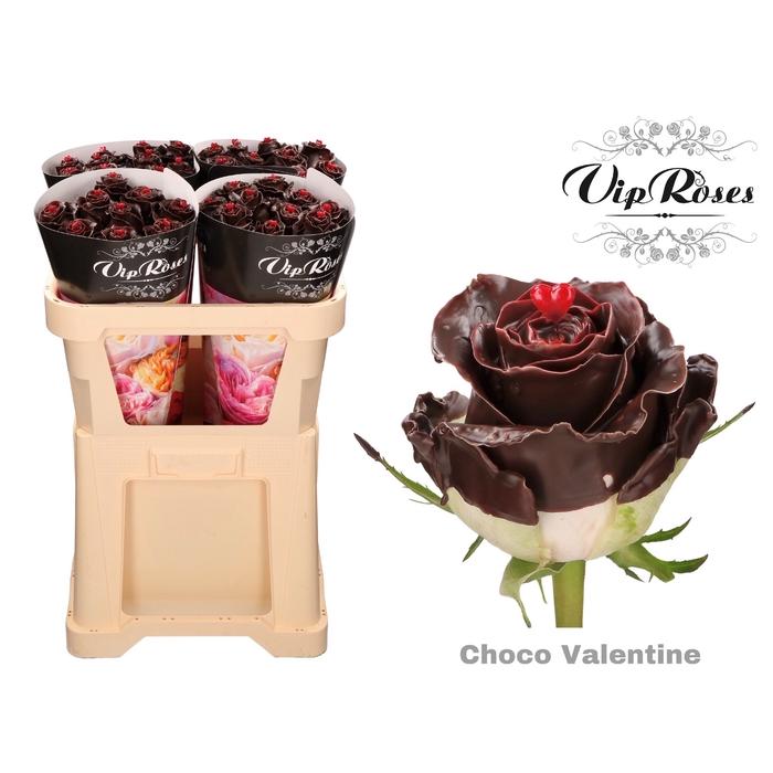 <h4>R GR CHOCO VALENTINE</h4>