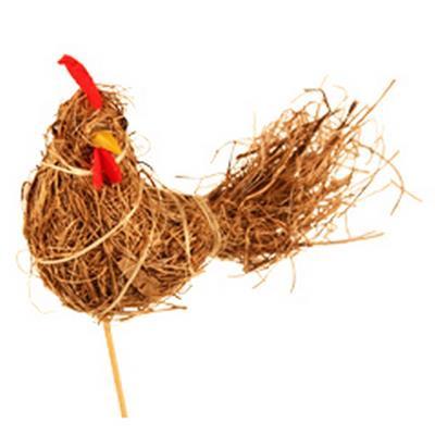 <h4>Pique Paille de poulet 8x13cm+bâton 50cm naturel</h4>