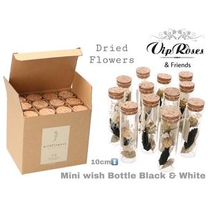 DRIED MINI WISH BLACK & WHITE