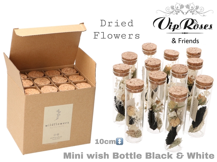 <h4>Vip Dried Mini Wish Bottle Bl & Wh</h4>