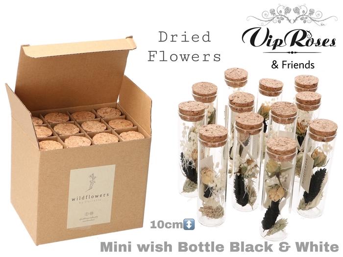 <h4>Vip Dried Mini Wish Bottle Bl & Wh</h4>