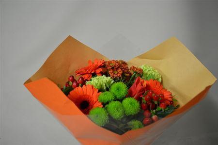 <h4>11 Stelen Oranje</h4>