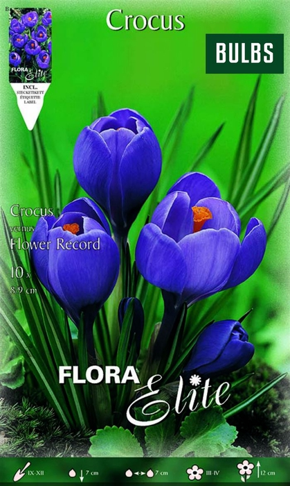 <h4>Z Crocus Flower Record</h4>