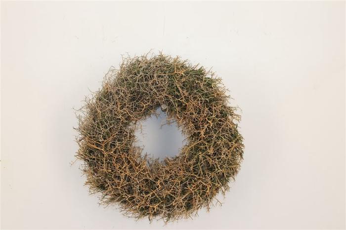 <h4>Wr Iron Bush Naturel 30cm</h4>