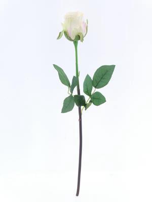 <h4>Af Oxford Rose Bud Cream Pink</h4>