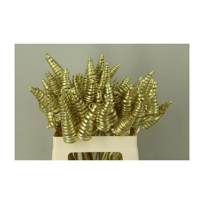 <h4>Stem Cane Cone Gold</h4>