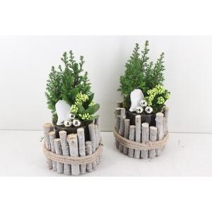 arr. VL - Glas in hout wit