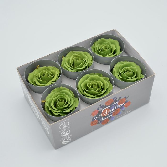 <h4>R PR M Green Tea</h4>