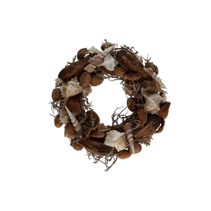 <h4>Wreath d30cm Shells dry tree</h4>