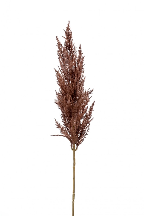 <h4>Silk Pampus grass 92cm</h4>