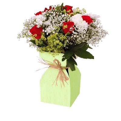 <h4>Vase Basic kraft carton+plastique 11,5xH21cm vert</h4>