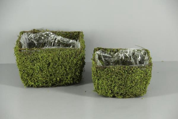 <h4>Planter Moss Square S/2</h4>