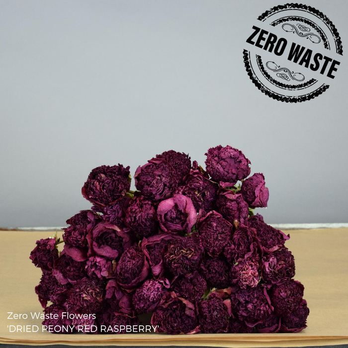 <h4>Dried Peony Red Raspberry</h4>
