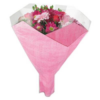 <h4>Housses 52x44x12cm OPP40 Duo Fibre rose</h4>