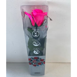 Roos op steel mini bright pink plexi