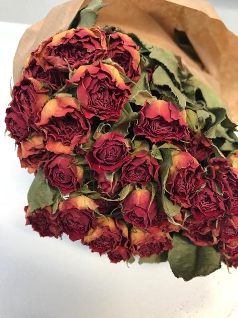 Roses spray orange nat. Craft