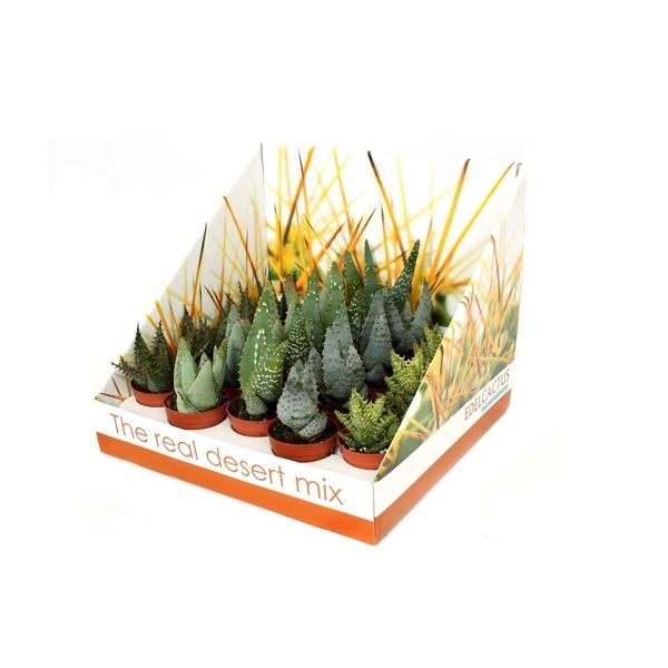 <h4>Aloe gemengd</h4>