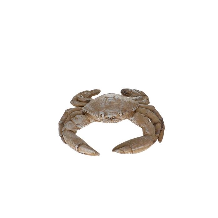 <h4>Decoration Deco Crab 15*13*4cm</h4>