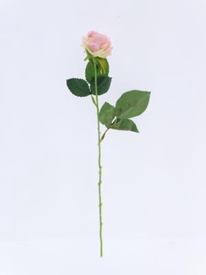 <h4>Af Diamond Rose Light Pink 40c</h4>