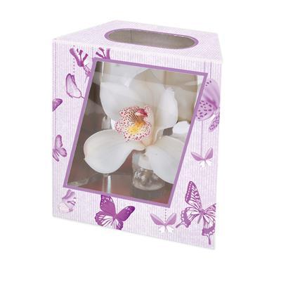 <h4>Boîte d' orchidee papillon 16/10x7,8xH17,5cm viole</h4>