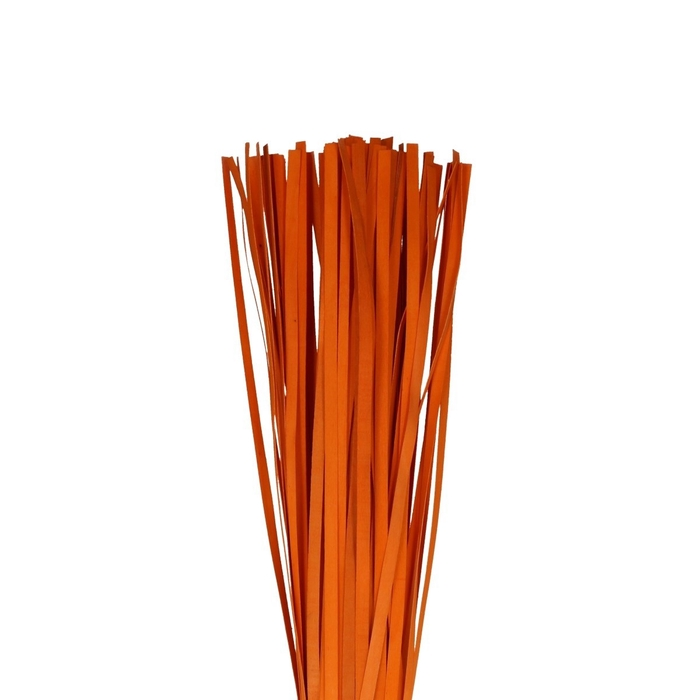 <h4>Droogdeco Houtband 110cm x100</h4>