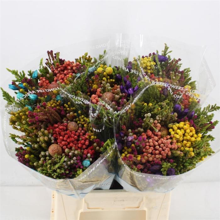 <h4>Bouquet Cape Mix Multi Colours</h4>