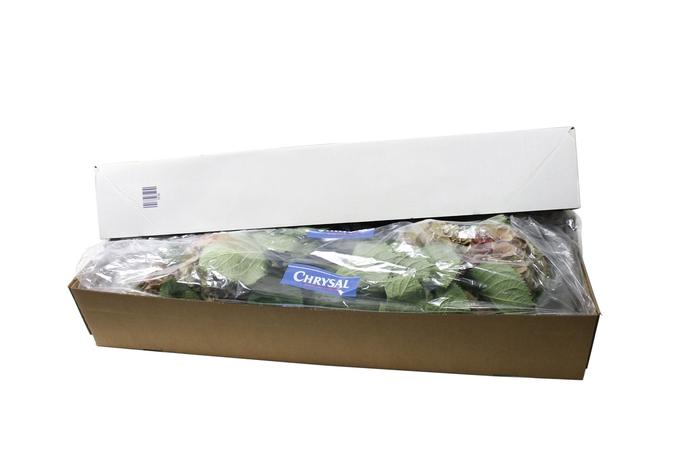 <h4>Abono organico Chrysal Freshliner 750mm x250</h4>