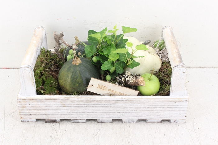 <h4>arr.. Siefruit MB - Hout tray oor x3</h4>